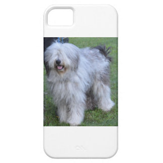Bergamasco Shepherd Dog iPhone 5 Cases