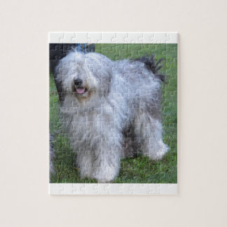 Bergamasco Shepherd Dog Jigsaw Puzzle