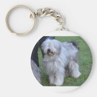 Bergamasco Shepherd Dog Keychain