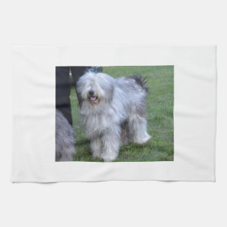 Bergamasco Shepherd Dog Kitchen Towel