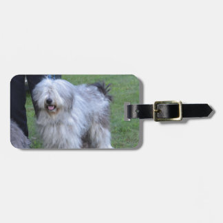 Bergamasco Shepherd Dog Luggage Tag