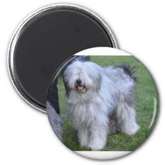 Bergamasco Shepherd Dog Magnet