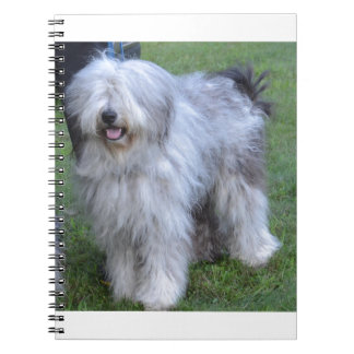Bergamasco Shepherd Dog Note Books