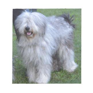 Bergamasco Shepherd Dog Notepads