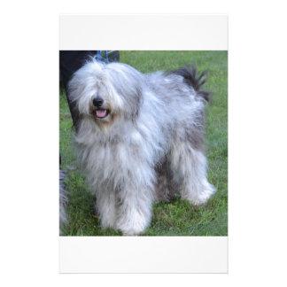 Bergamasco Shepherd Dog Personalized Stationery