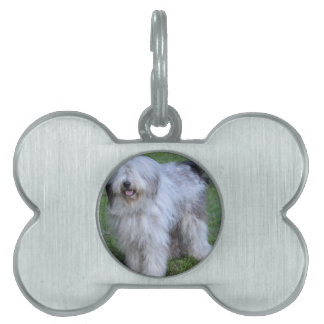 Bergamasco Shepherd Dog Pet Name Tag