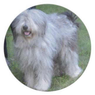 Bergamasco Shepherd Dog Plate