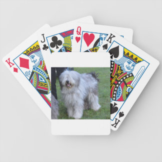 Bergamasco Shepherd Dog Poker Deck