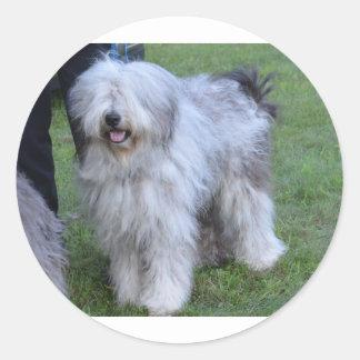 Bergamasco Shepherd Dog Round Sticker