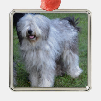 Bergamasco Shepherd Dog Silver-Colored Square Ornament