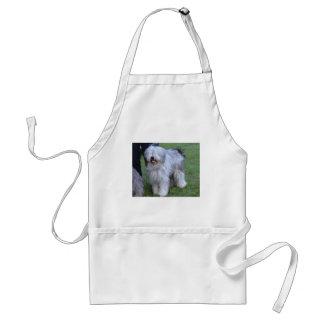 Bergamasco Shepherd Dog Standard Apron