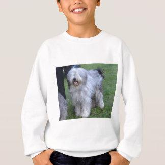 Bergamasco Shepherd Dog Sweatshirt