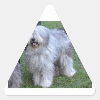 Bergamasco Shepherd Dog Triangle Sticker