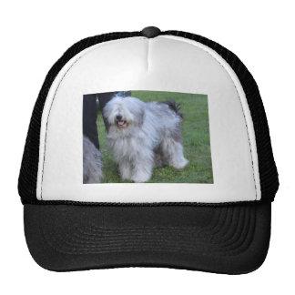 Bergamasco Shepherd Dog Trucker Hat
