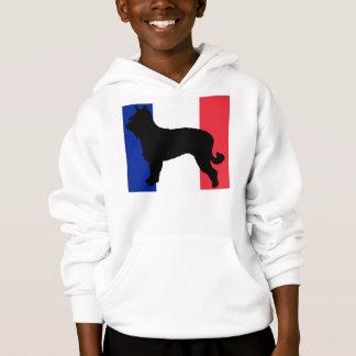 berger picard silo France flag
