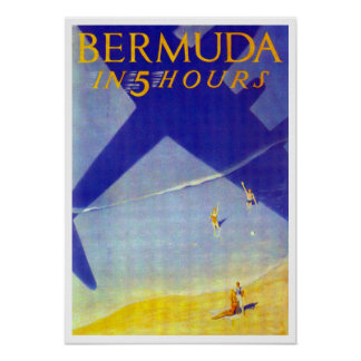 Bermud in 5 hours poster