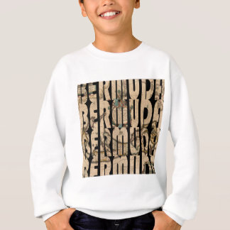 bermuda1662 1 sweatshirt