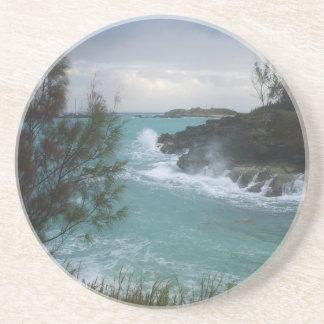 Bermuda Coaster
