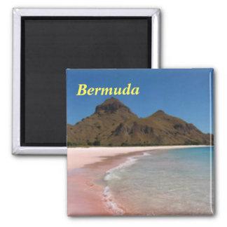 Bermuda Pink Beaches Magnet