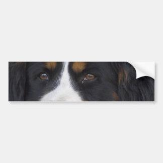 Berner Sennenhund Bumper Sticker