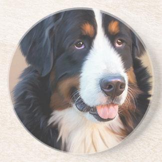 Berner Sennenhund Coaster