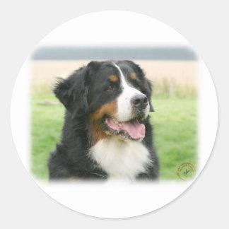 Bernese Mountain Dog 9Y066D-046 Round Sticker