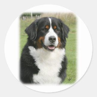 Bernese Mountain Dog 9Y236D-106 Round Sticker