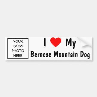 Bernese Mountain Dog Bumper Sticker