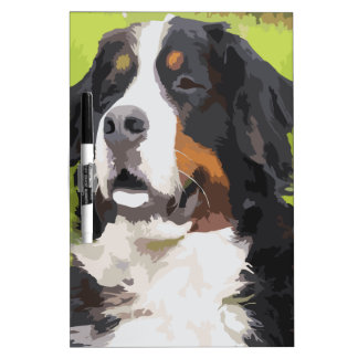 Bernese mountain dog Dry-Erase boards