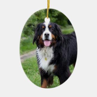 Bernese mountain dog hanging ornament, gift idea ceramic ornament