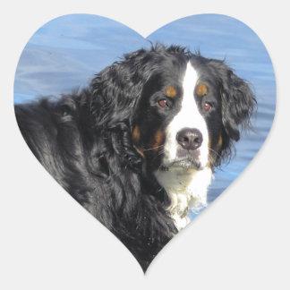 Bernese Mountain Dog Heart Sticker