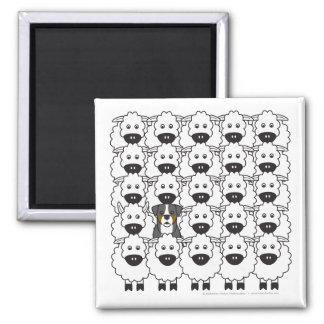 Bernese Mountain Dog in the Sheep Square Magnet