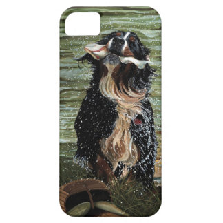 Bernese Mountain Dog iphone 5 case