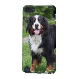 Bernese Mountain Dog ipod touch 4G case, gift iPod Touch 5G Cover