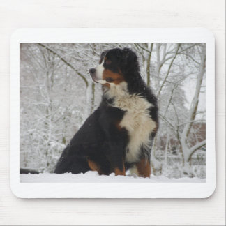 Bernese Mountain Dog Mouse Pad