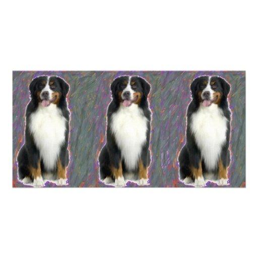 BERNESE MOUNTAIN DOG PHOTO GREETING CARD