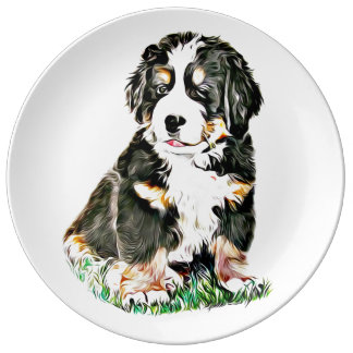 Bernese Mountain Dog Plate