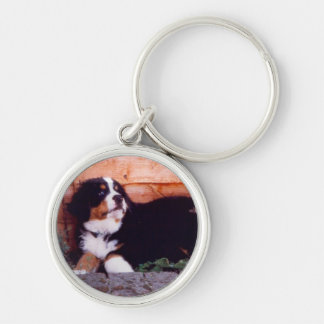 Bernese mountain dog puppy keychain