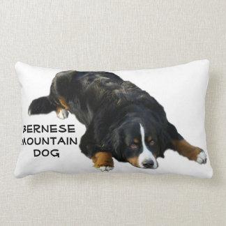 Bernese Mountain Dog Rug Pose Pillow