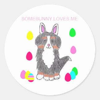 Bernese Mountain Dog Somebunny Loves Me Classic Round Sticker