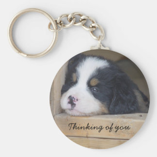 Bernese Mountain Dog -  Thinking of you key chain