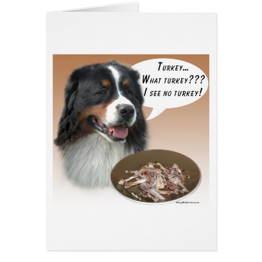 Bernese Mountain Dog Turkey Greeting Cards