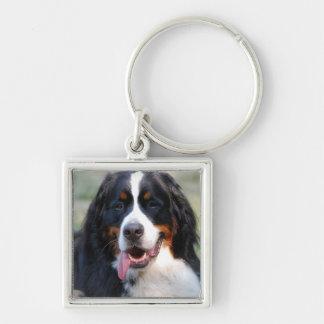 Bernese Mountain Dog with Big Tongue Keychain