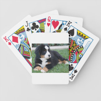 Bernese Mountain Puppy Bicycle Playing Cards