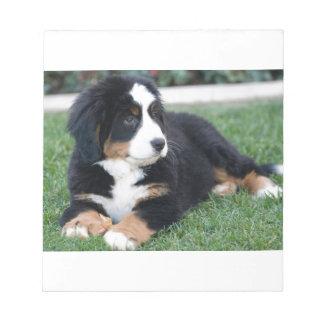 Bernese Mountain Puppy Notepad
