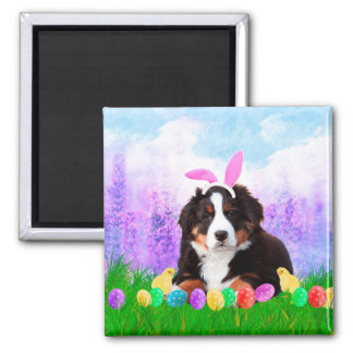 Bernese Mountain with Easter Eggs Bunny Chicks Magnet