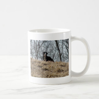 Bernese Mt. Dog Coffee Mug