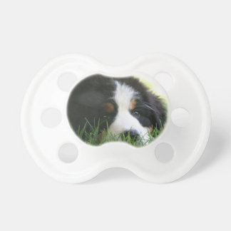 Bernese Puppy Baby Pacifiers