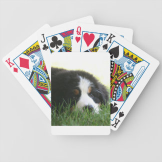 Bernese Puppy Bicycle Playing Cards