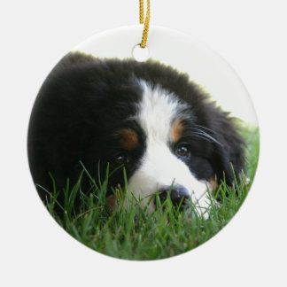 Bernese Puppy Ceramic Ornament
